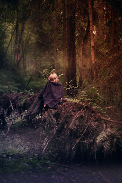 'Secret Forest' ~photograph by Glazastik Finch