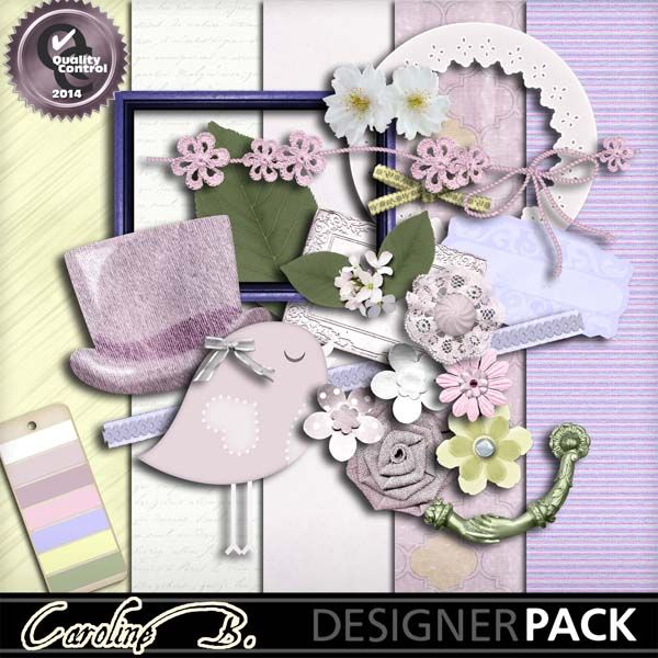 Flower And Lace Weddings Kit1