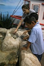Oklahoma Aquarium Foundation: The Oklahoma Aquarium is a public non ...