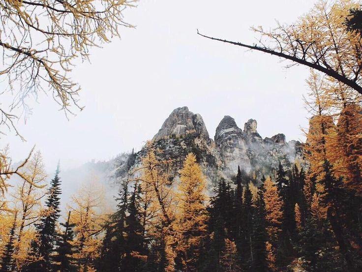 425 best autumn images on Pinterest   Seasons of the year, Autumn ...