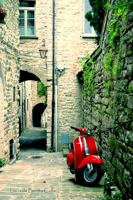 Vespa Italia by Lucía db., via Flickr
