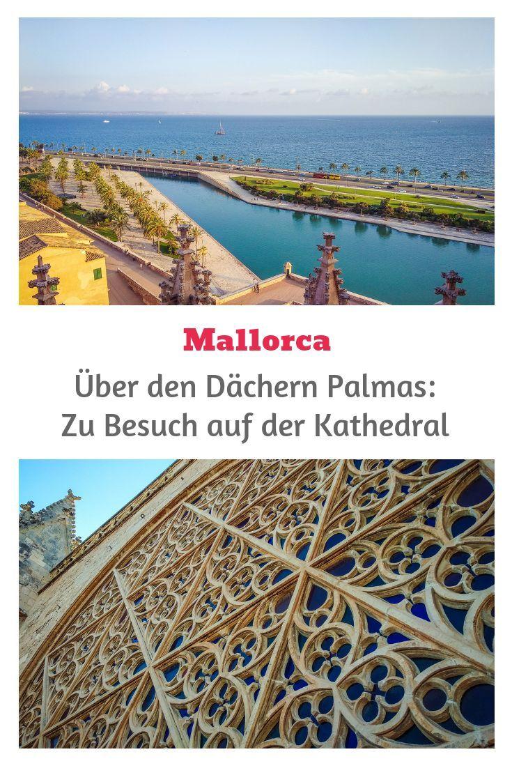 Uber Den Dachern Palmas Zu Besuch Auf Der Kathedrale Mallorca