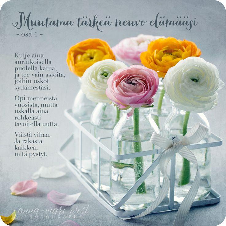 Kortti; Muutama neuvo kukat lasipullossa   Anna-Mari West Photography