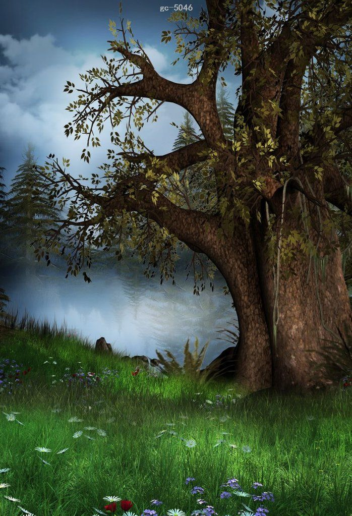 Forest Tree Photo Background Photography Studio Backdrop Digital Photography Backdrops Photography Backdrops Studio Backdrops