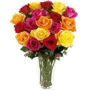 Poema de Rosas Coloridas