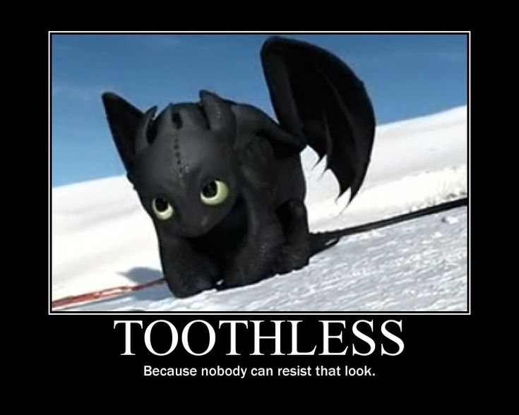 TOOTHLESS MEMES!!!!! | School of Dragons | How to Train Your Dragon Games