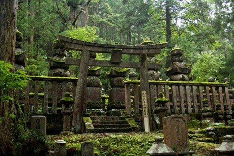Meer dan 200.000 graven langs een twee kilometer lang pad met huizenhoge cederbomen: het Okunoin kerkhof op de heilige Koya-berg in Japan is spookachtig mooi. Hier liggen volgens het Boeddhisme geen doden, maar slechts wachtende zielen.