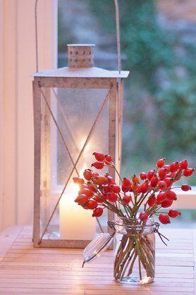 Es herbstelt #herbst #autumn #hagebutten #rosehips Foto: Shilly - shally