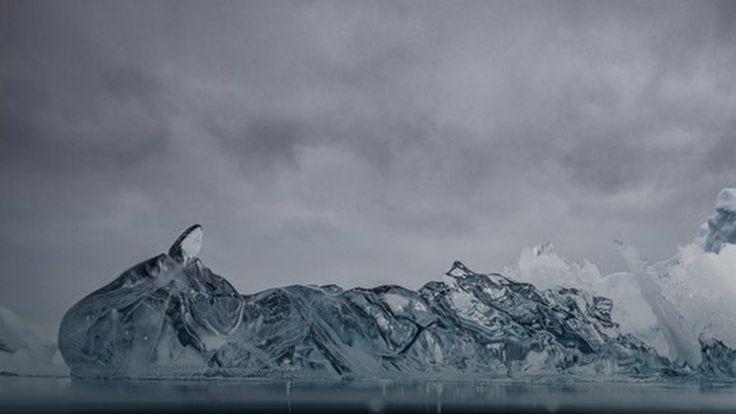 Zobacz, jak wygląda góra lodowa pod wodą #inspiracje