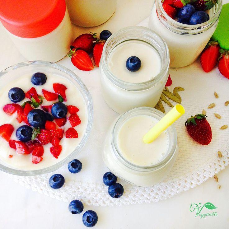 Desde o ano passado que tenho vindo a fazer vários iogurtes, mas nunca ficavam…