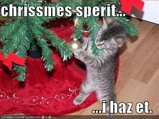 Christmas Spirit: Christmas Cats, Christmas Time, Funnies Animal, Cats Meme, Holidays, Christmas Spirit, Kittens, Christmas Trees, Funnies Christmas
