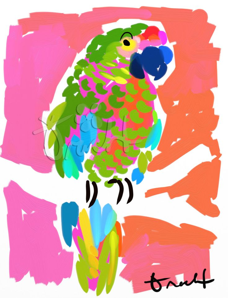 Key West Parrot Artwork: Beach Decor, Coastal Decor, Nautical Decor, Tropical Decor, Luxury Beach Cottage Decor