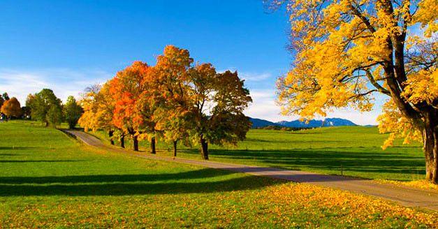 99€ | -51% | Bayerischer #Wald – 3 Exklusive #Wellness- & #Genusstage