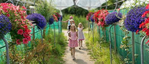 De Zelfpluktuin - Fruit, groente en bloemen zelf plukken op Texel