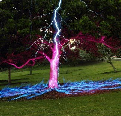 Astonishing Capture!...Long Exposure Picture of a Lightning Bolt Hitting a Tree!