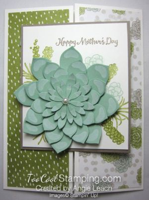 455 Best Images About Oh So Succulent Stampin Up On