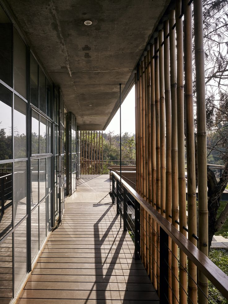 Gallery of The Riparian House / Architecture BRIO - 13