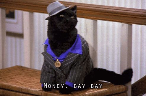 A few of the greatest things Salem the cat ever said (34 pics) – theBERRY