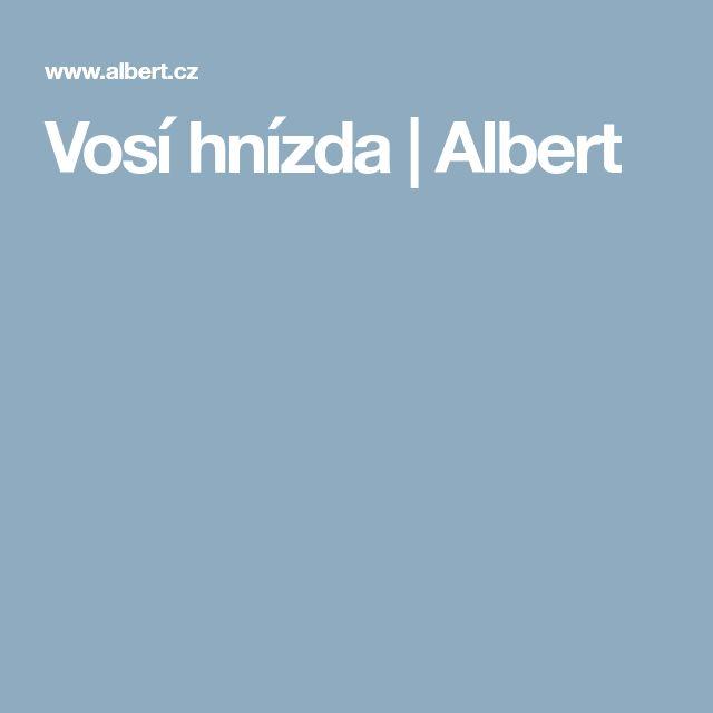Vosí hnízda | Albert