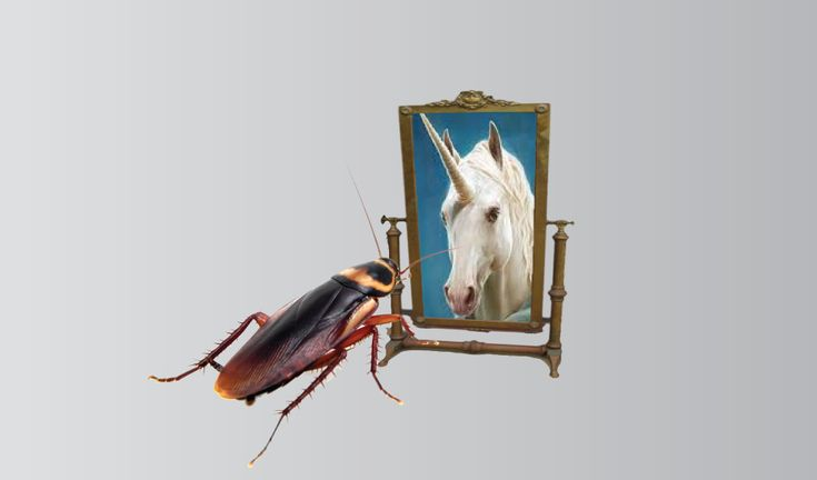 unicorn-roach-large