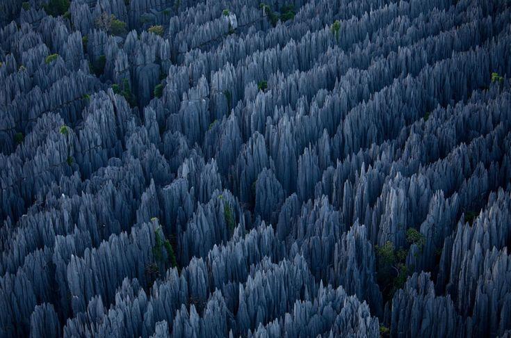 El bosque de piedra deMadagascar.
