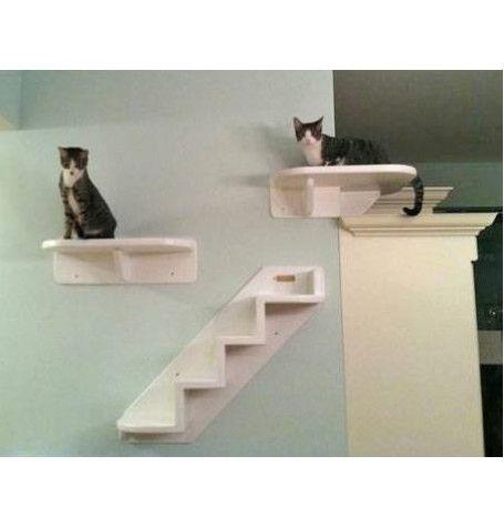 Wrap around corner cat estante de la pared gatos - Estanterias para gatos ...
