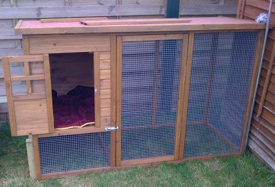 outdoor cat houses  | How to Make an Outdoor Cat Run ~ Its A Grand Blog