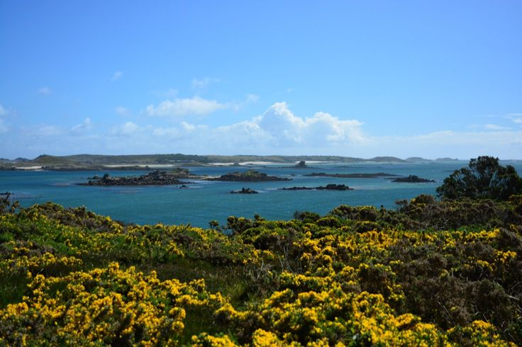Wer gerne mal Inselurlaub macht, aber nicht weit weg fliegen möchte, ist auf den Scilly Inseln genau richtig. Tresco ist perfekt für eine Reise mit Kindern!