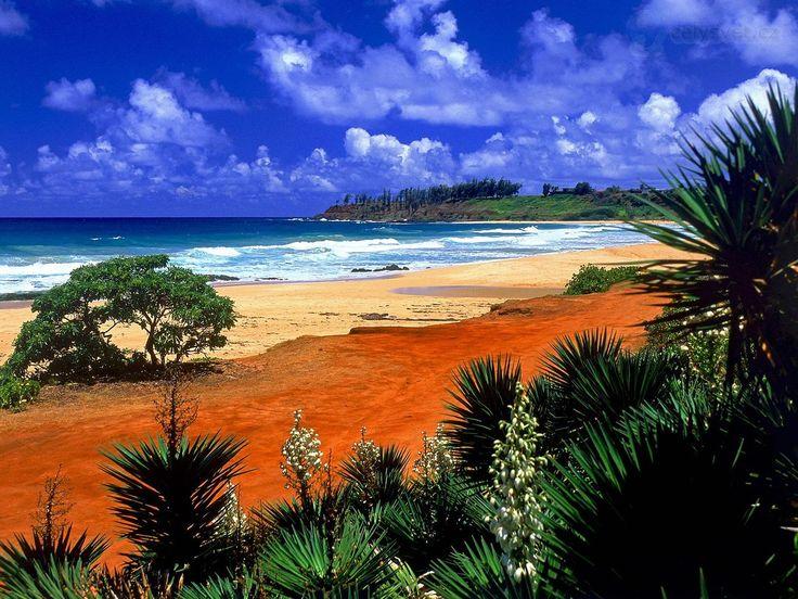 Kauai Beaches | Kealia Пляж, Kauai, Гавайи / Kealia Beach, Kauai, Hawaii