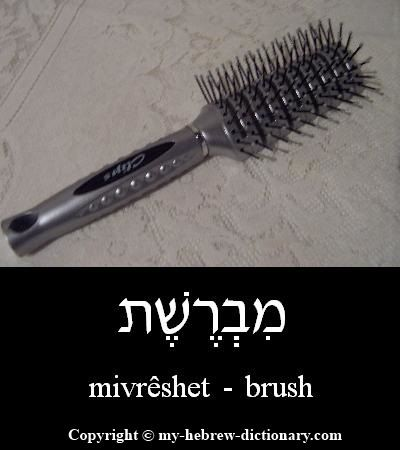 "How to say ""Brush"" in Hebrew"