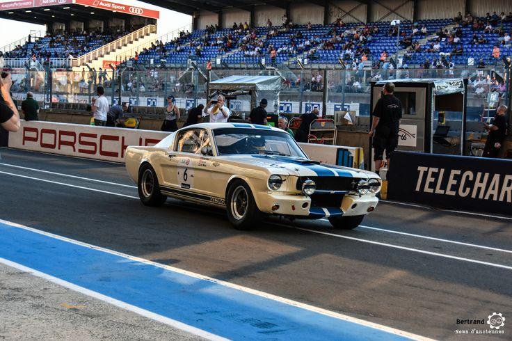 #Shelby #Ford #Mustang #GT350 à #LeMansClassic 2016 #MoteuràSouvenirs Reportages : http://newsdanciennes.com/tag/le-mans-classic/ #ClassicCars #ClassicRacing