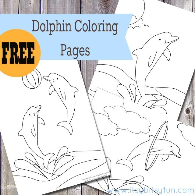 Free Printable Dolphin Coloring Pages - Free Printables for All Occassions