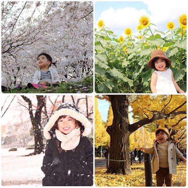 【yu.e.mii】さんのInstagramをピンしています。 《12.31* 今年もお世話になりました◡̈ igを通じて皆さんの素敵なお写真に刺激を頂いたり、仲良くして頂いて楽しい1年になりました( °◡͐︎°)♡ 今年も娘達とたくさん出掛けられた事に感謝♡ ・ #3歳 #娘 #長女 #春夏秋冬 #桜 #ひまわり #銀杏 #雪 #お出かけ #感謝 #1年間ありがとう #2016 #ママカメラ #canon #ig_kids #ig_kidsphoto #igfamily_friends #kidsgram_tokyo #ママリ #mamanoko #コドモノ #smarby #スマービースマイル #ベビリトル #コノビー》