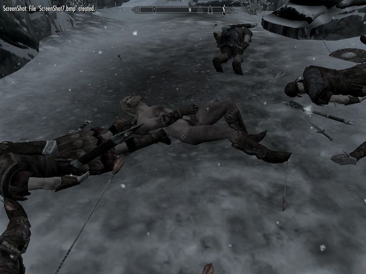 Mister, that's not a good place to jerk off. - Skyrim.