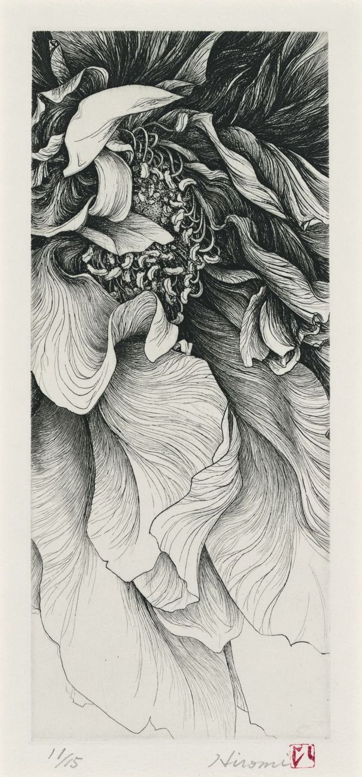 Best Art Images On Pinterest - Nobody can believe this japanese artists pencil drawings arent photographs
