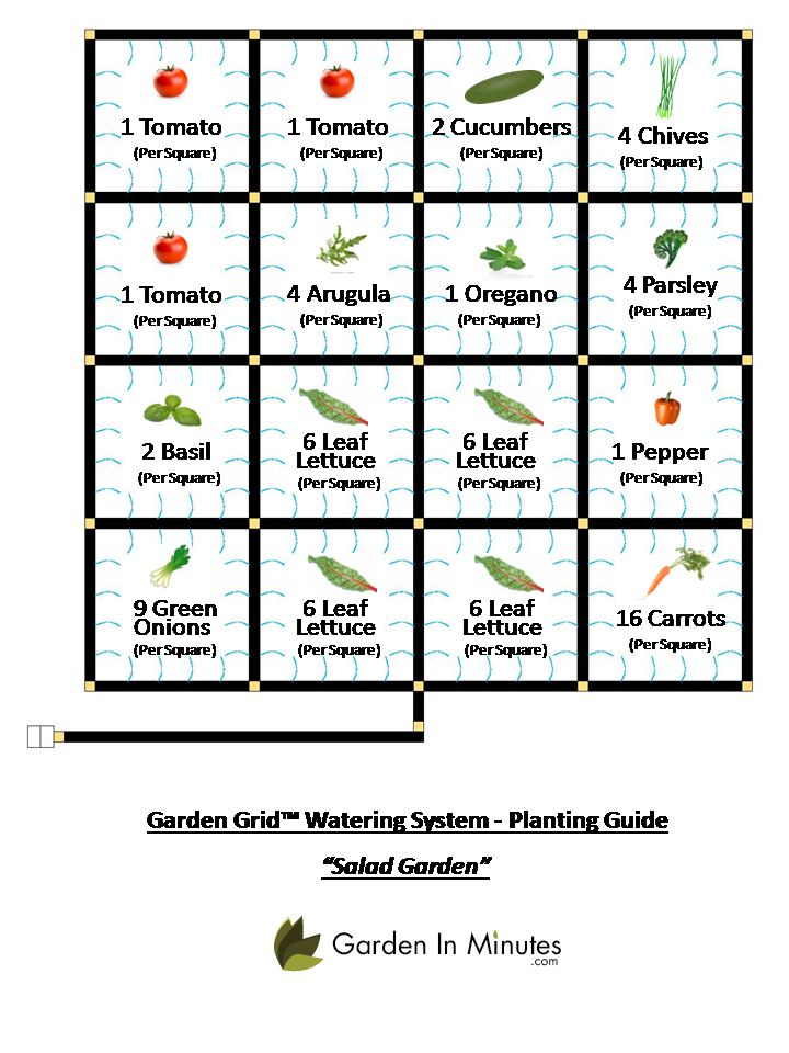vegetable planting guide and recommended planting This vegetable gardening chart has information on when to start seeds, fertilize, and water your common vegetables  vegetables growing guide  best vegetables.