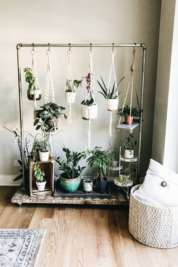 Hanging herb garden. Scroll herb garden. Home design and decoration Id