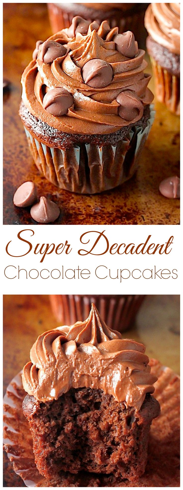 Super Decadent Chocolate Cupcakes - These Homemade Chocolate Cupcakes have RAVE reviews in the comments and are so easy to make! We LOVE these.