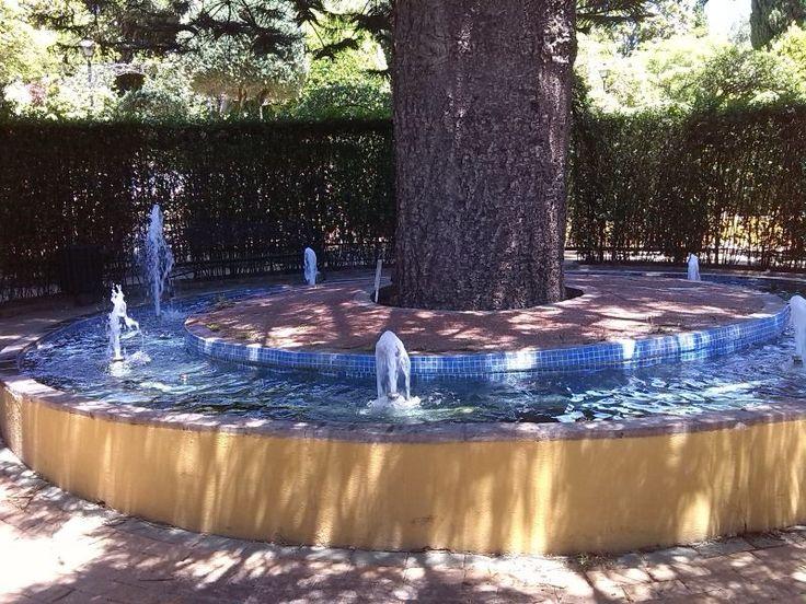 Torremolinos-Spain-Botanical garden