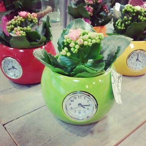Fleurshop zet de tijd op.....