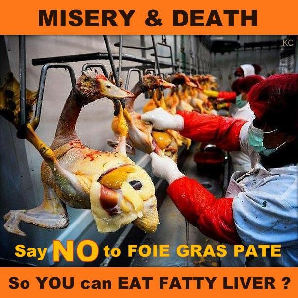 say no to foie gras pate