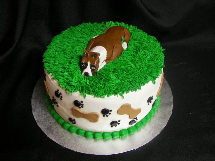 Birthday Cakes For Dogs Recipes Uk ~ Images about animal cakes on pinterest dog