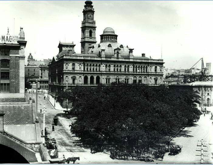 Department of Lands in Sydney in 1900. •State Archives of NSW• 🌹