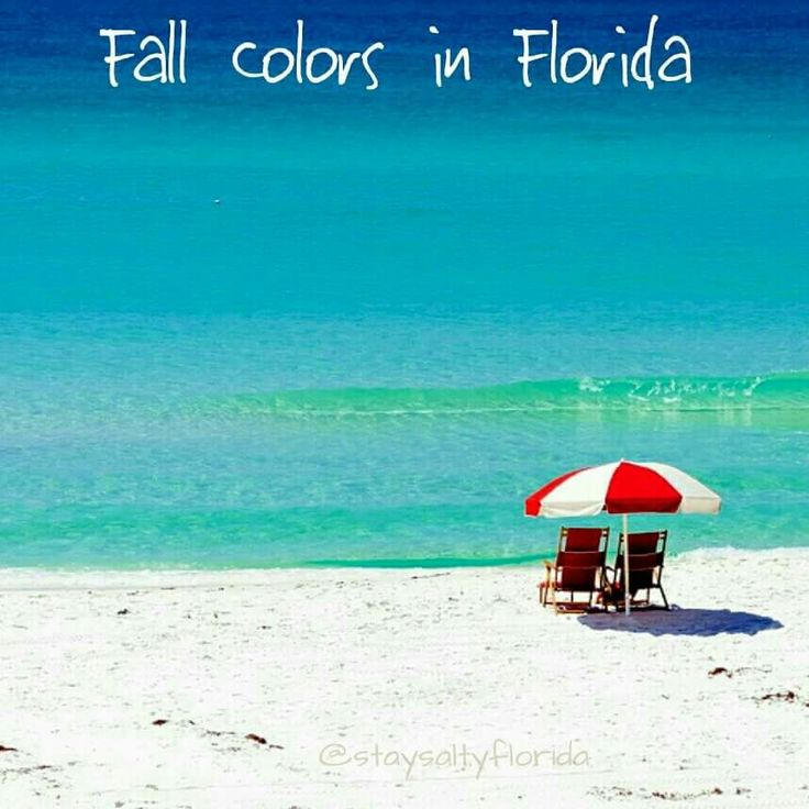 84 best fl home sweet home images on pinterest florida for Why live in florida