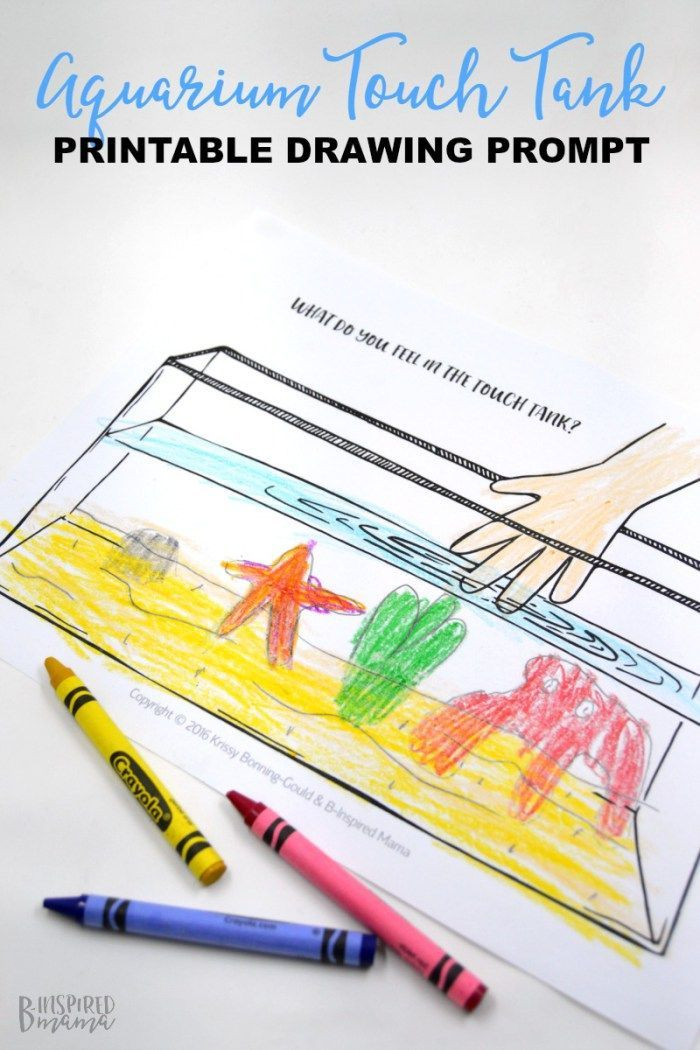 A FREE Printable Touch Tank Drawing Prompt for Kids + Our Family Trip to Adventure Aquarium - at B-Inspired Mama - sponsored by Adventure Aquarium
