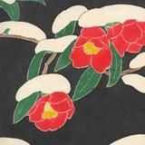 Tsubaki dark    Tsubaki is one of our most popular patterns, representing the camellia flower. The pattern became popular in the Edo era, and has different meanings depending on the color. Red flowers symbolize love, and white ones show longing. As camellia begin blooming in the winter, it is a hopeful sign for the coming spring