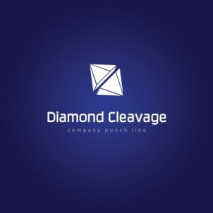 A logo template suitable for businesses dealing in diamonds, diamond-cutting, diamond polishing, fashion-shows, night-clubs, jewelry etc. All layers,fonts and colors are editable. Fonts used are Ginger-Light Regular and Calibri Regular. Size: 3000x3000px $29.00