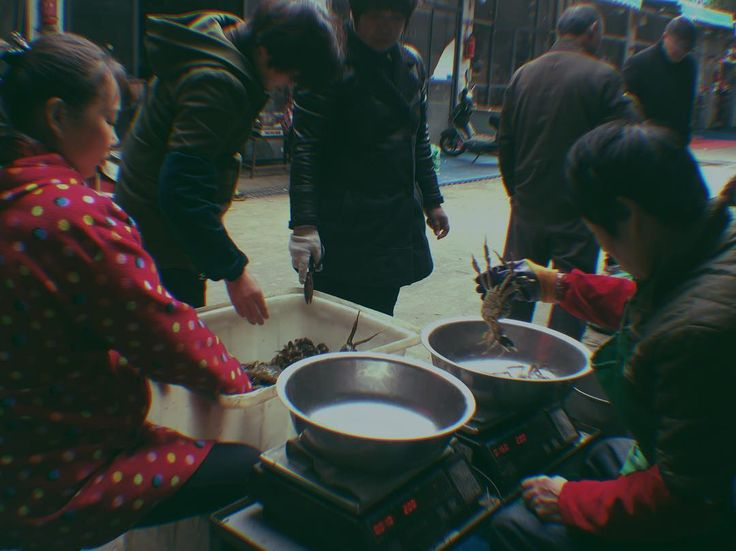 Yangcheng Lake hairy crabs#crab #season#food#market #work#street#streetphotography #streetstyle#nyc#newyork#daily#film#discover#london#hongkong#shanghai#suzhou#Korea#Tokyo#photo#photography #photographer#instagram#magnumphotos#instagood#instadaily#instasky #instalike#Apple#coffee