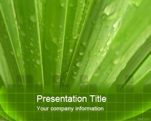 Aloe Vera PowerPoint Template is a free green template slide design with Aloe theme in the background
