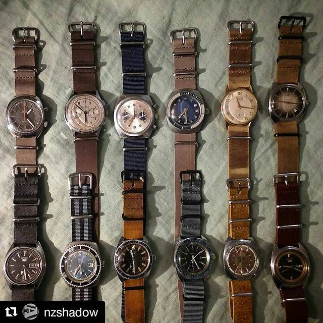 @nzshadow, the #natostrap Lord!